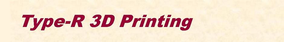Type-R 3D Printing Rotterdam